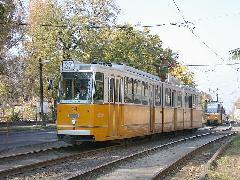 A 28-as és 37-es villamosok hétvégén ritkulnának, 12-ről 15 percre., Új köztemető, Budapest (forrás: Halász Péter)