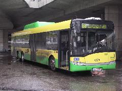Új beszerzésű Solaris gázüzemű busz. A gázos buszok festése egységesen sárga-zöld., Pozsony (forrás: Müller Péter)