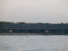 Hármas csatolt Desiro-szerelvény a bontásra ítélt hídon (forrás: Pulisch József)