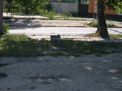 Felsővezetéktartó oszlop csonkja a Fertő utcában , Fertő utca, Budapest (forrás: Istvánfi Péter)
