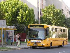 Az új 2-es autóbusz az Erfurti úton: a  József Attila lakótelepről közvetlenül elérhető lett Sziget, és a járatsűrűség is nőtt bizonyos időszakokban, Erfurti út, Győr (forrás: VEKE)