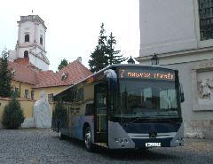 Győrben, a Káptalan dombon, Kátalan domb, Győr (forrás: VEKE)