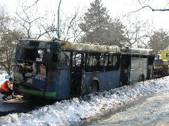 Az Ikarus 412-esek különlegessége, hogy nem csak a rekkenő hőségben, de csikorgató hidegben is képesek vázig kiégni. A BPI-050 a Margitszigeten járt így., Margitsziget, Budapest (forrás: Hajtó Bálint)