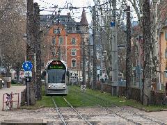 A freiburgi villamosok könnyen felismerhetőek a szokásosnál nagyobb viszonylatjelzőkről - ahol nem füves pályákon haladnak, ott gyalogoszónákban., Freiburg im Breisgau (forrás: Mészáros Gergely)