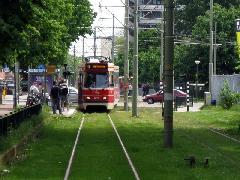 Hága kiterjedt villamoshálózatán elterjedt a füvesített pálya - ahol pedig aszfaltozott, ott a buszok is használhatják., Hága (forrás: Sparing Dániel)