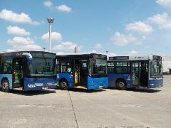 Három a busz Cinkotán (forrás: Dorner Lajos)