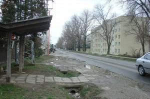 """""""Megálló"""" a 7-es járat útvonalán (fotó: Kisl József)"""