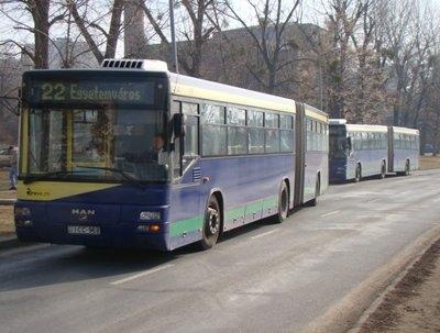 Az Egyetemvárosba napközben egyszerre érkező 22-es és 12-es autóbuszok.  Ezt húsz perc autóbusz nélküli időszak követi.